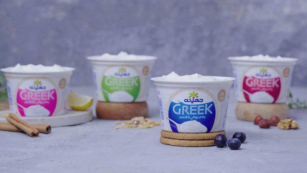 هل الزبادي اليوناني المنكه مسموح في الكيتو
